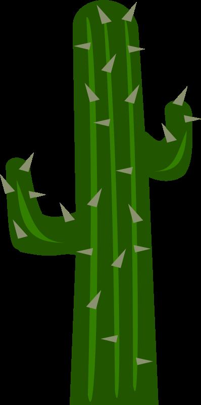 Free Cactus2