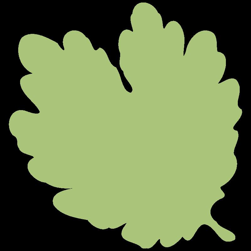 Free leaf 06