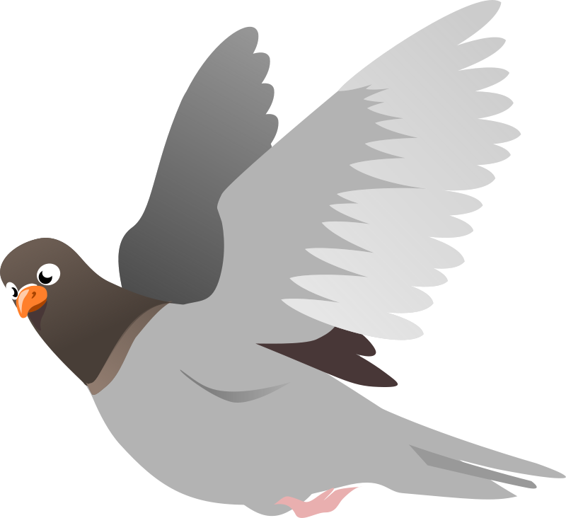 Free A Flying Pigeon