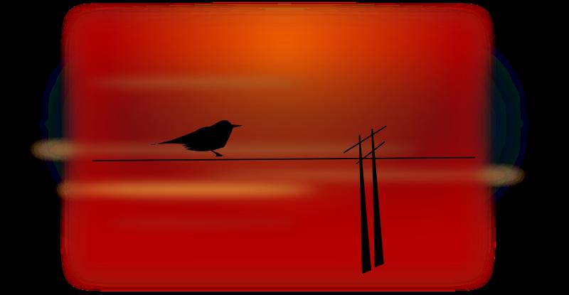 Free bird on wire