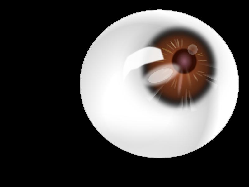 Free Eyeball brown