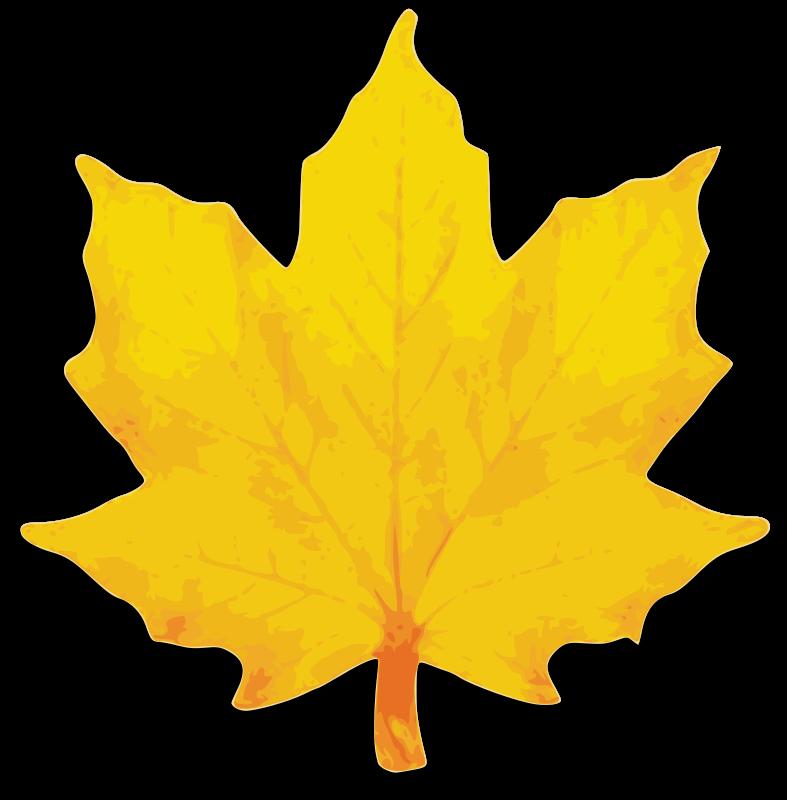 Free M Leaf 02