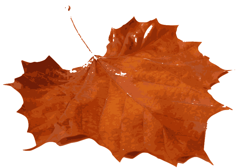 Free Clipart: M Leaf 01 | inky2010