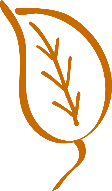 Free Old leaf