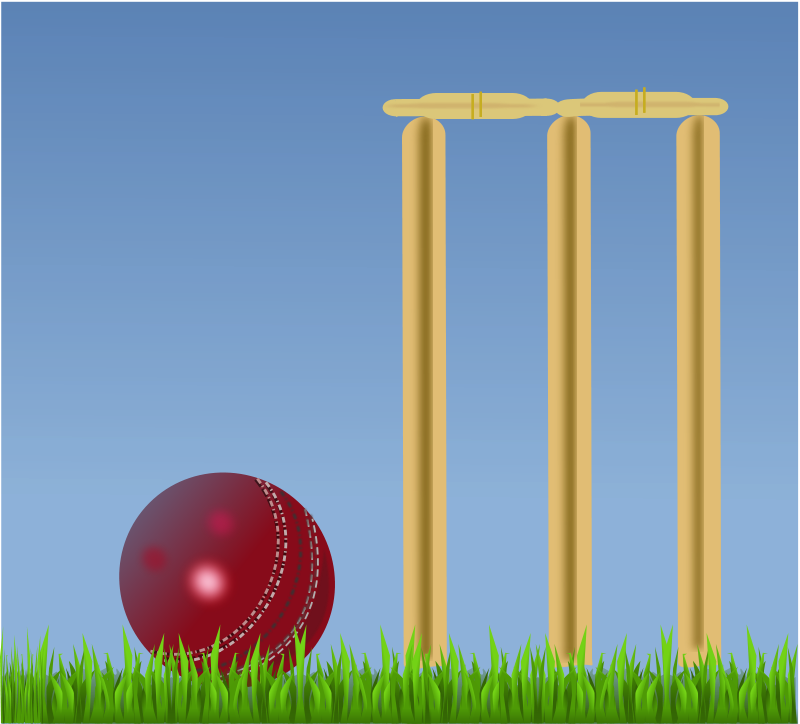 Free cricket illustration