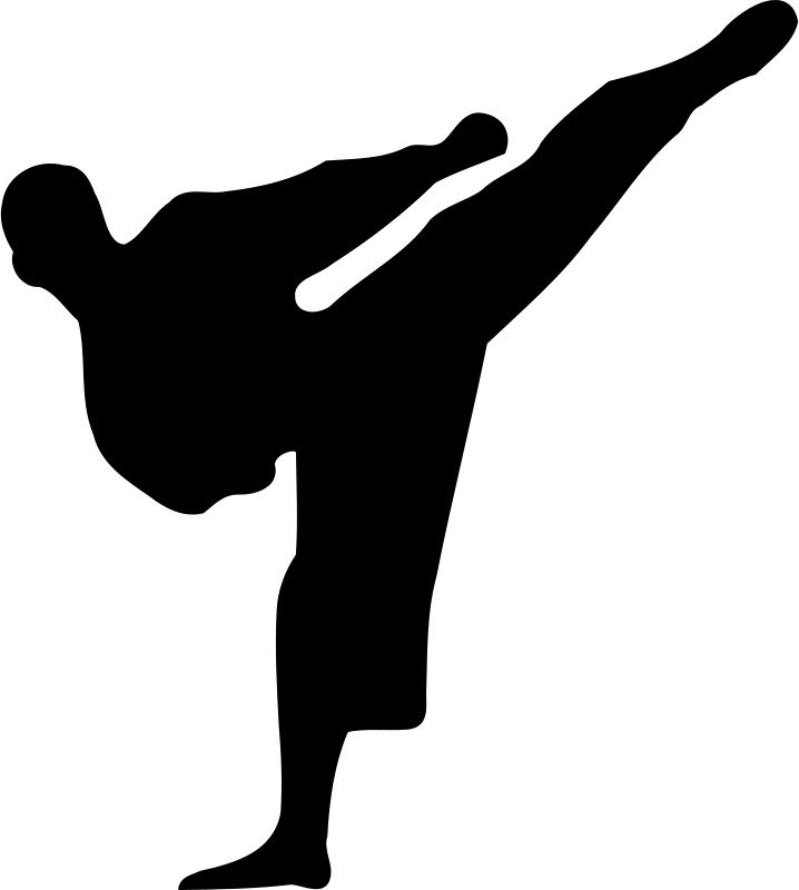 Free Karate silhouette