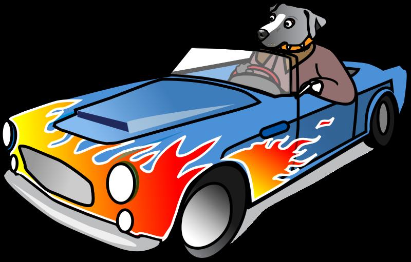 Free Dog in Sports Car