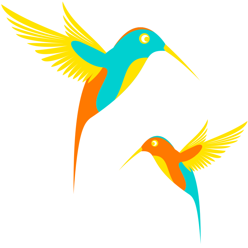 Free Colibri Birds