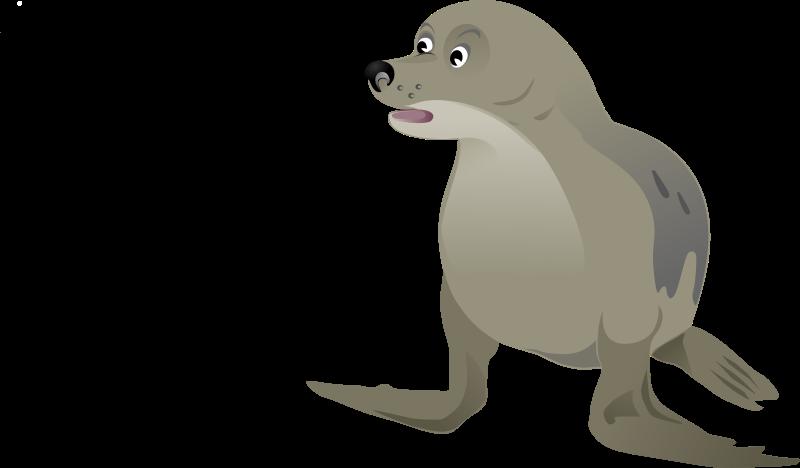 Free Grey Seal