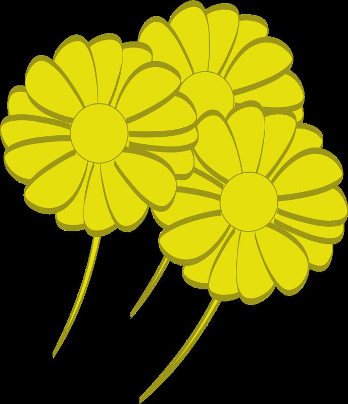 Free yellow flowers