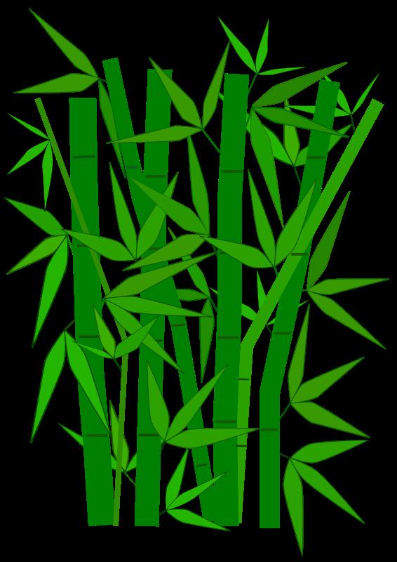 Free Bamboo graphic