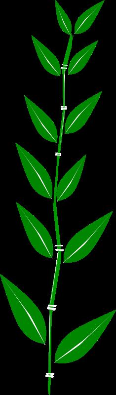 Free Bamboo,leaf
