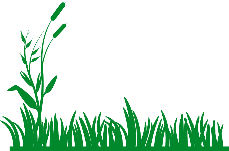 free clipart grass background rg1024 rh 1001freedownloads com free clip art glass of water free clip art glass of water