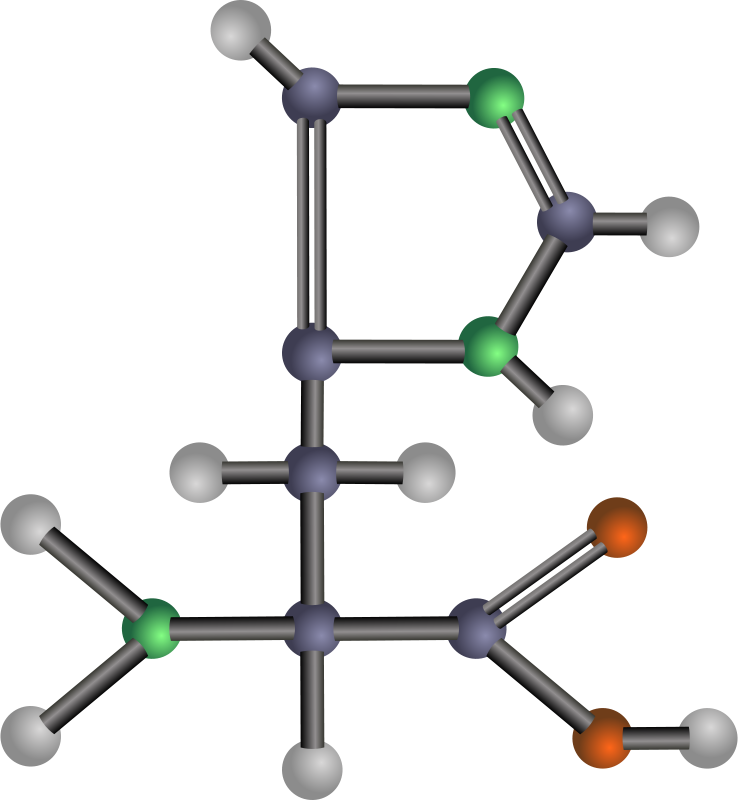 Free Histidine (amino acid)