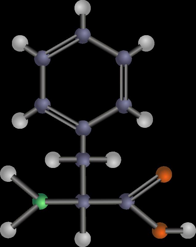 Free Phenylalanine (amino acid)