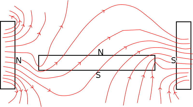 Free Magnetic field lines