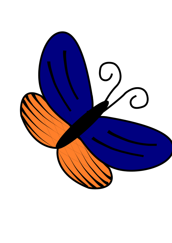 Free Blue and orange butterfly