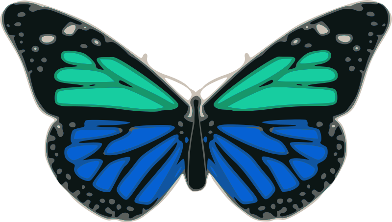Free Butterfly 02 Turquoise Blue