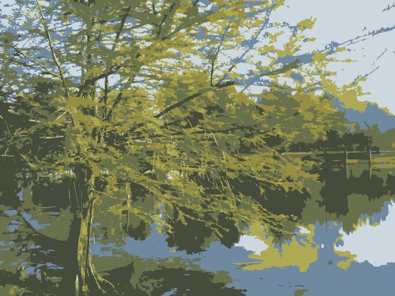 Free Tree Over Pond