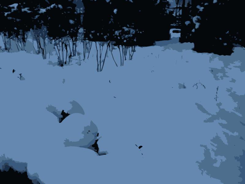 Free 2009-11-01 17.02.04
