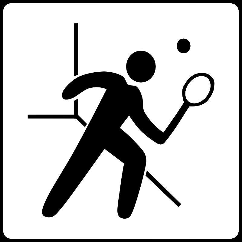 Free Hotel Icon Has Squash Court