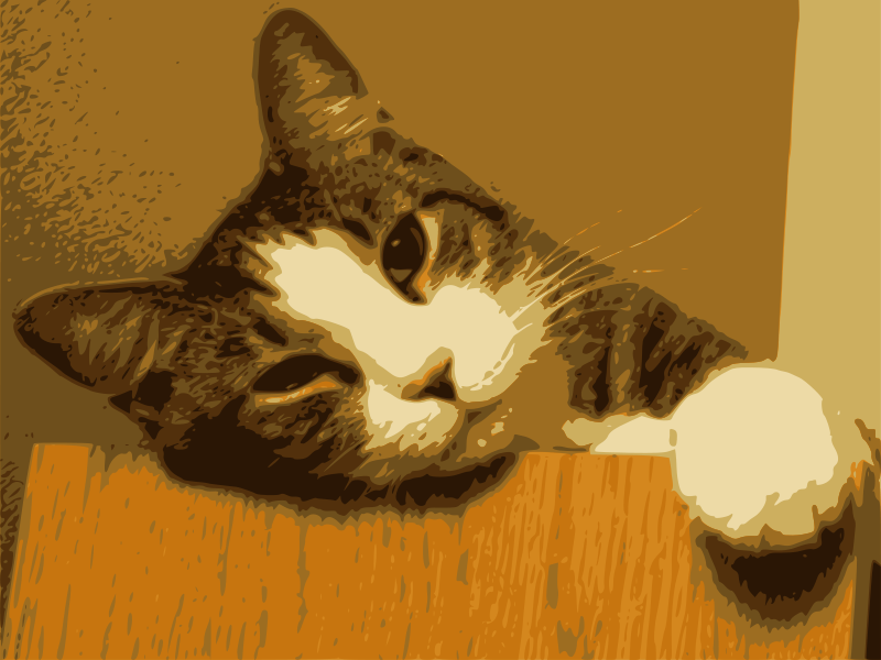 Free Relaxed Cat