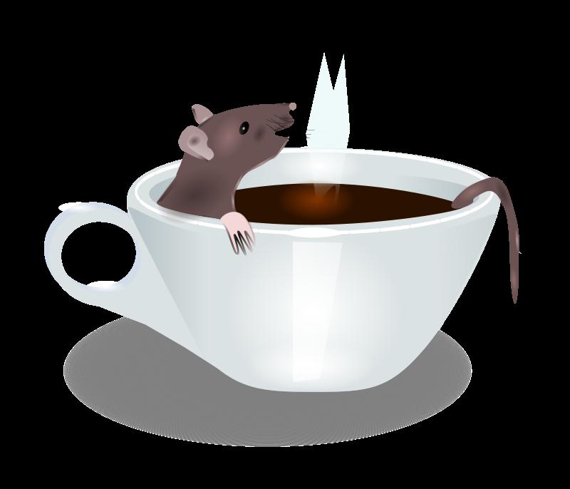 Free rat in coffee