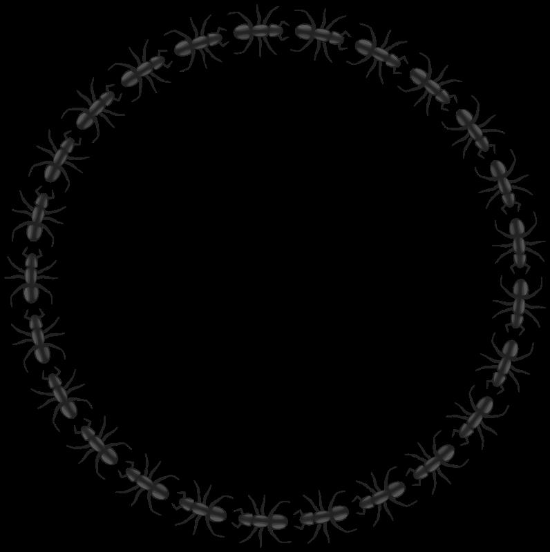Free ant border circle