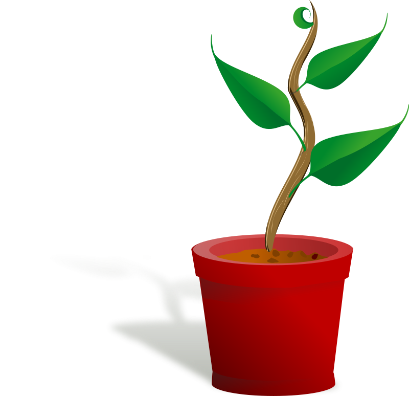 Free plant growing