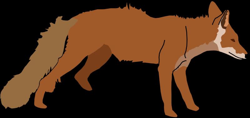 Free Fox