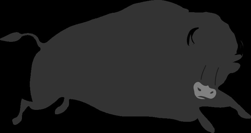 Free Bison bison