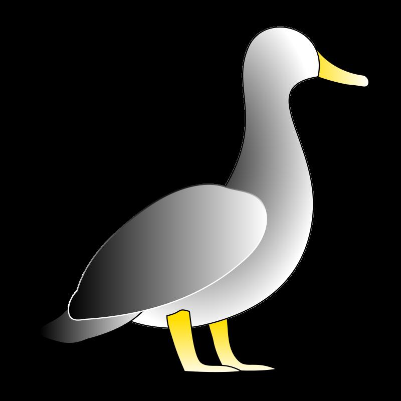 Free Jonathon's Duck