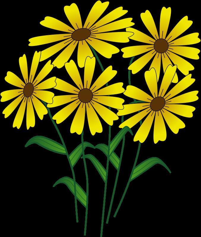April Showers Bring May Flowers Clip Art | Clipart Panda - Free Clipart  Images | Clip art, Flower drawing, Clip art borders