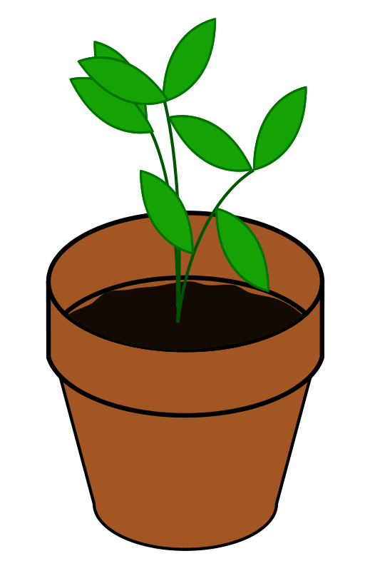 Free Plant, Terracotta