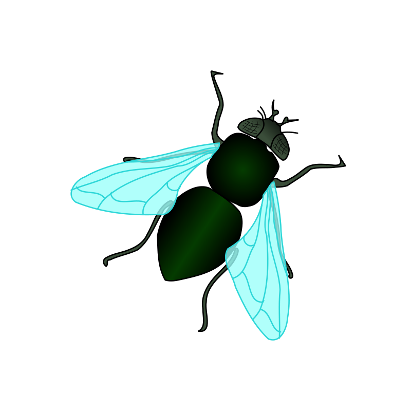 Free Green House Fly