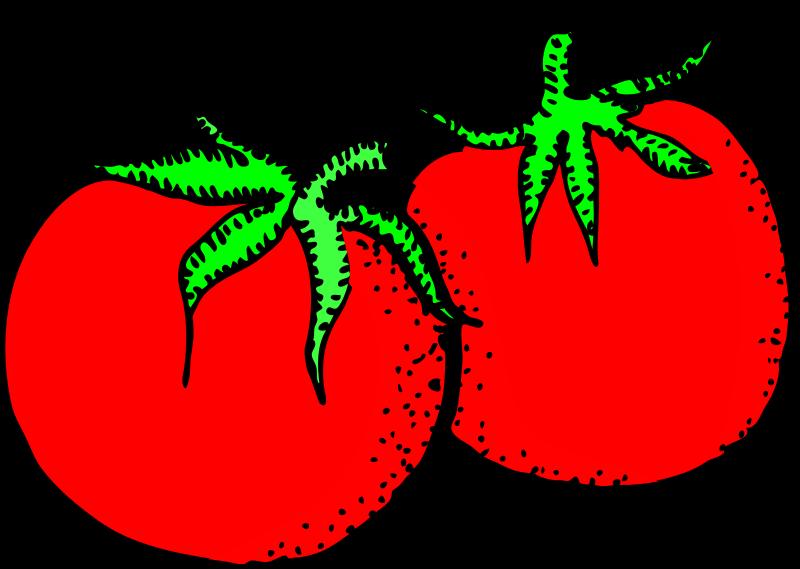 Free Architetto -- pomodori