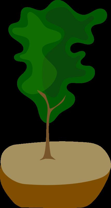 Free Tree in Pot