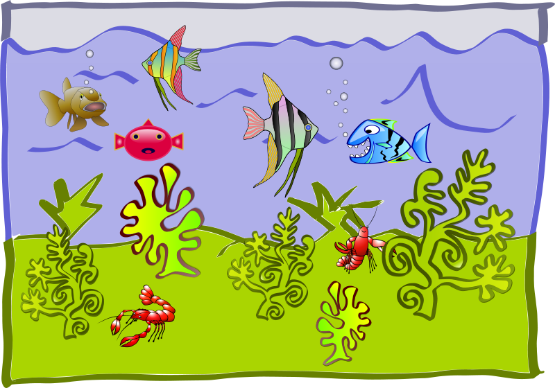 Free underwater world - aquarium