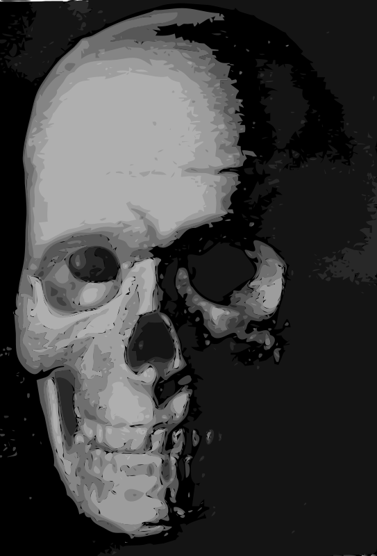 Free Skull 8c
