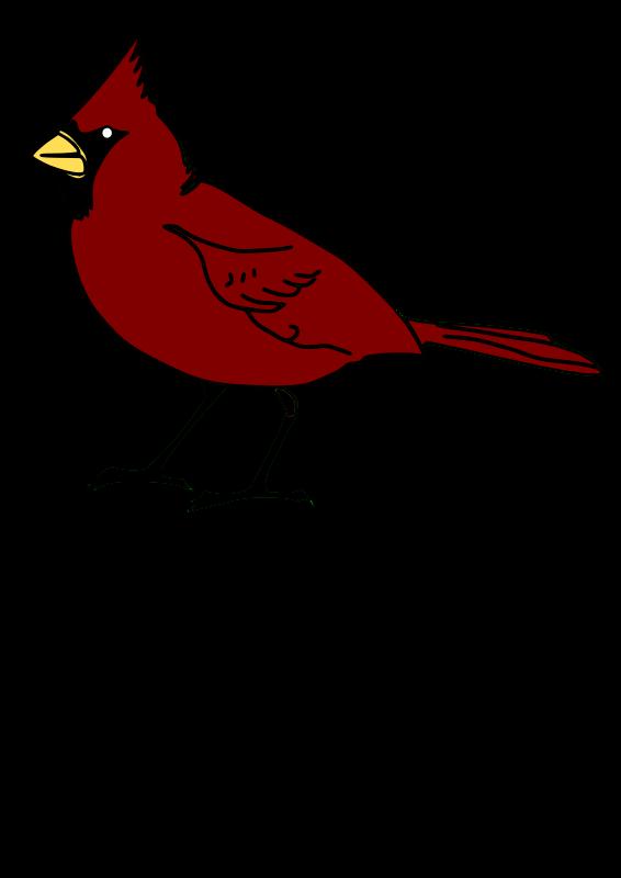 Free Cardinal