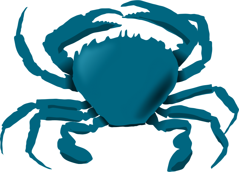 free clipart blue crab annaleeblysse rh 1001freedownloads com free hermit crab clipart