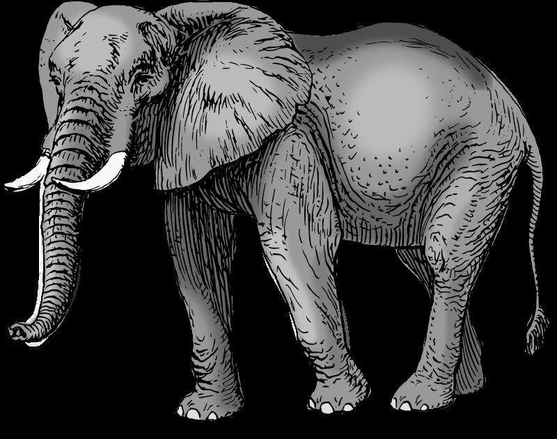 Free Colored elephant