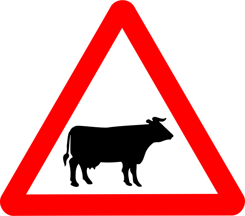 Free Roadsign Cattle