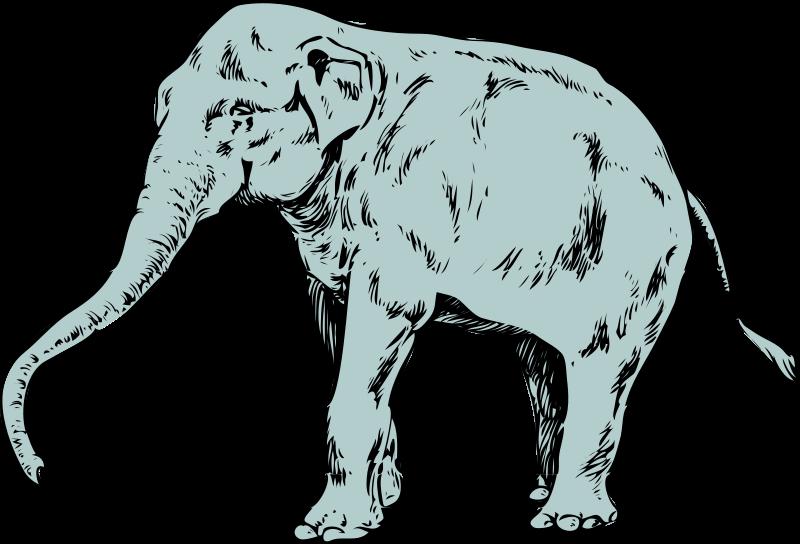 Free Architetto -- Elefantone