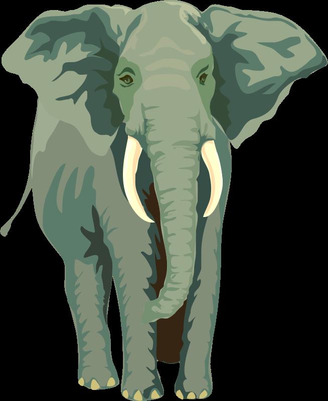 Free Architetto -- Elefante 01