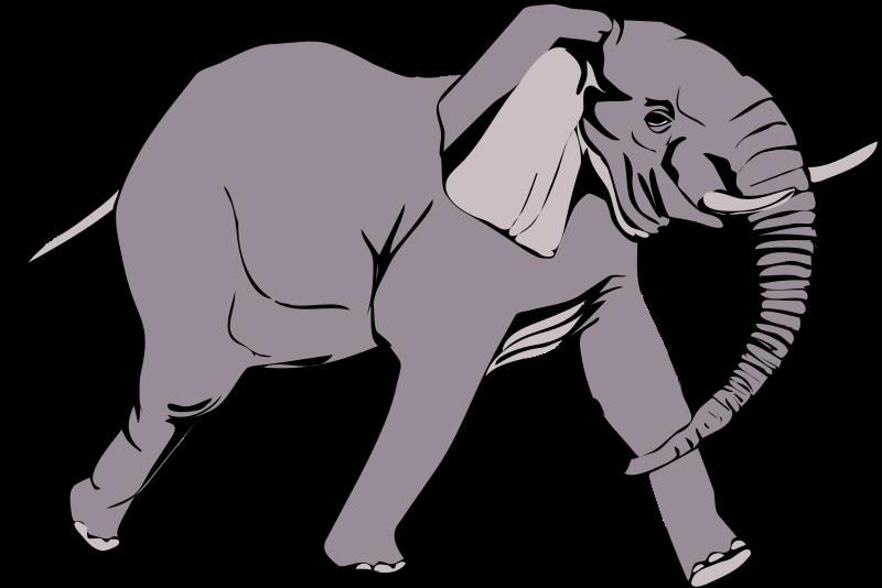 Free Architetto -- Elefante in corsa