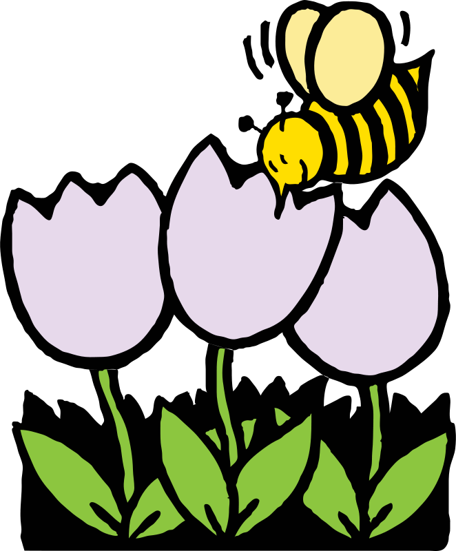 Free bee and flowers
