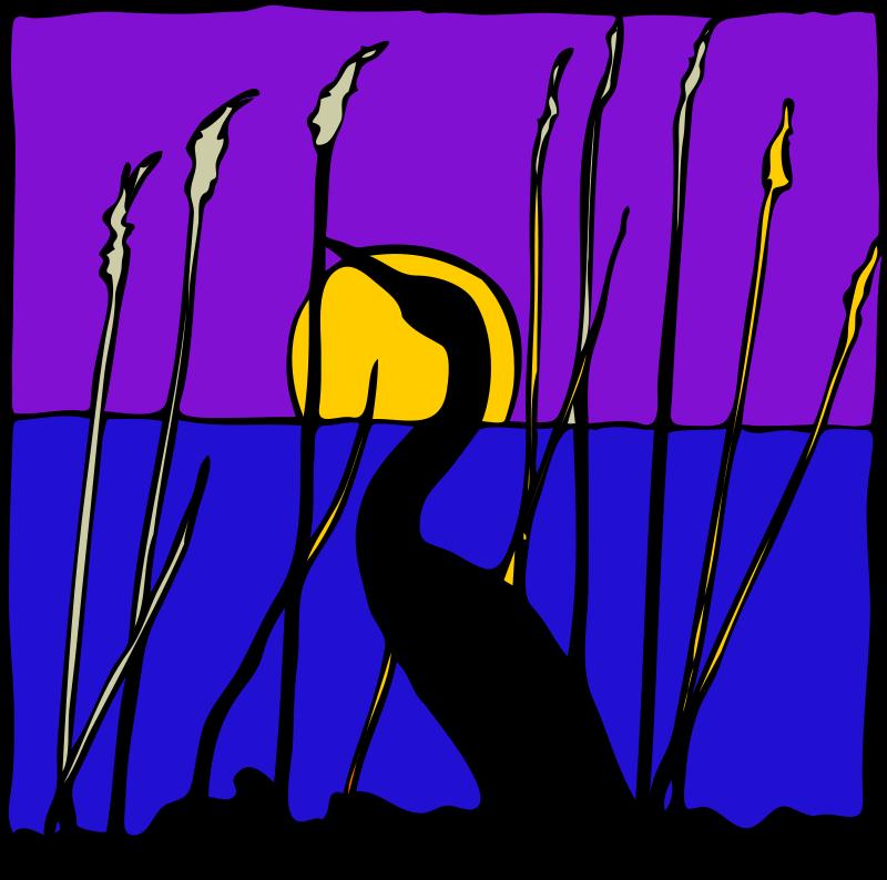 Free Architetto -- Cigno di notte nella palude