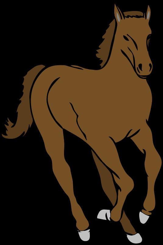 Free Architetto -- Cavallo 20
