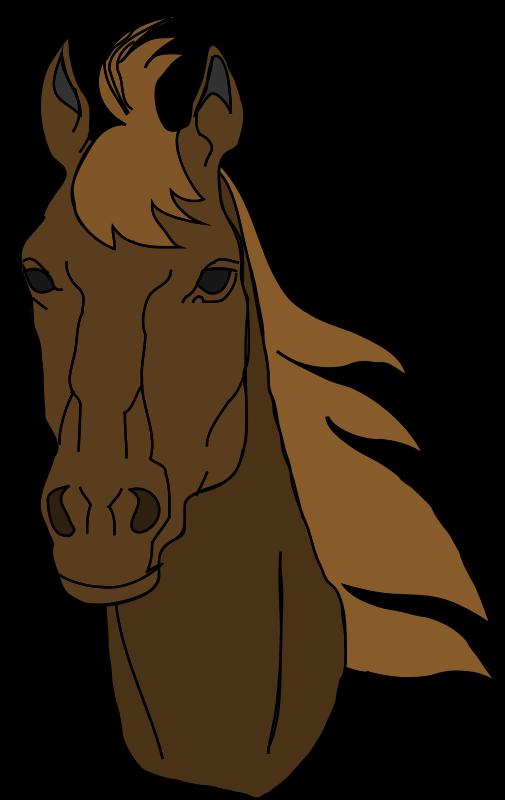Free Architetto -- Cavallo 17